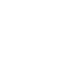 OPT customer experience icon